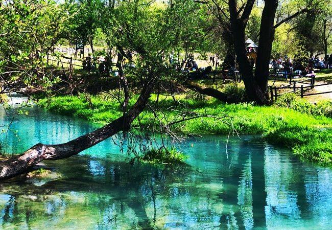 Parco Lavino: un'oasi naturale a portata di viaggio